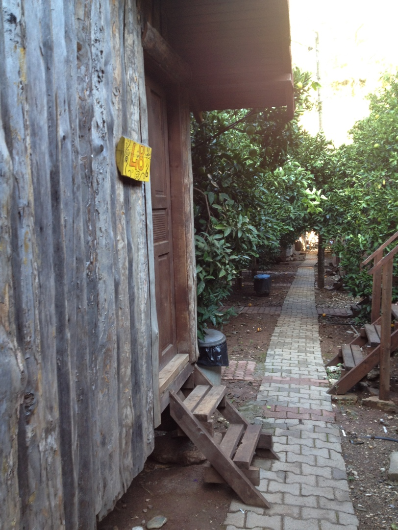 Our treehouse hostel, Bayrams, at Olympos