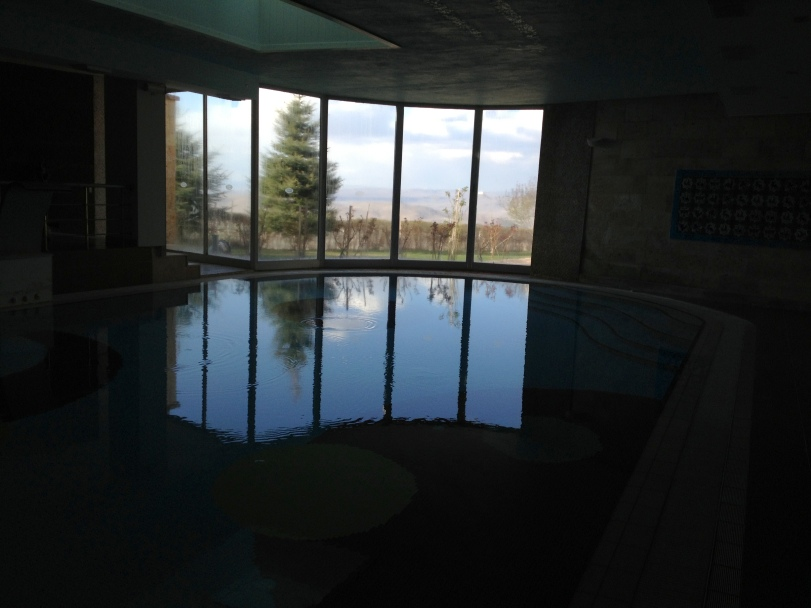 Even a great view from the indoor swimming pool at CCR